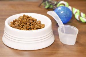 ペット用品のフードと食器