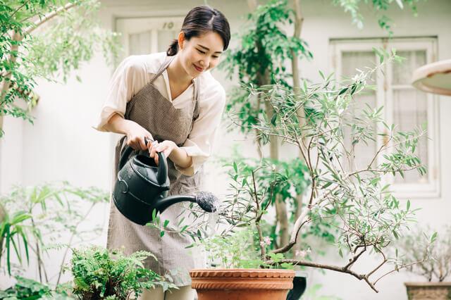 遺品の植物の手放し方