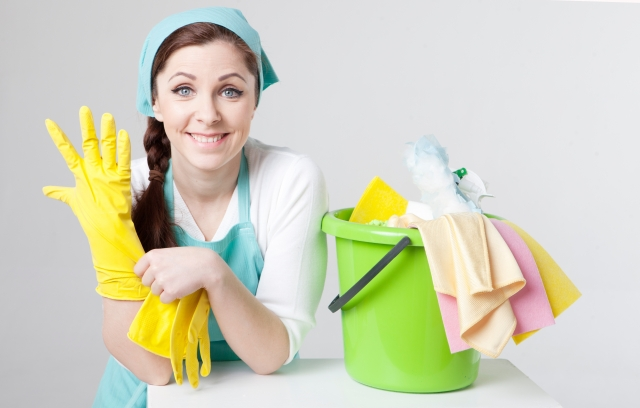 キッチン ゴミ 虫 ブログ02