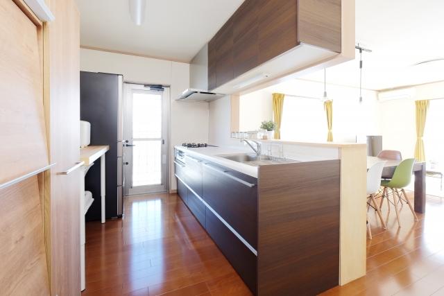 キッチン ゴミ 虫 ブログ05