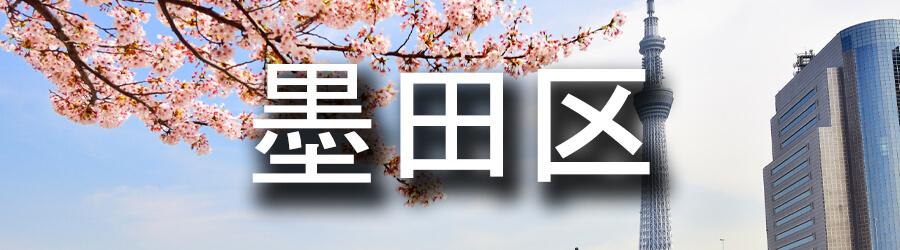 墨田区(東京)でのゴミ屋敷清掃・不用品回収事例