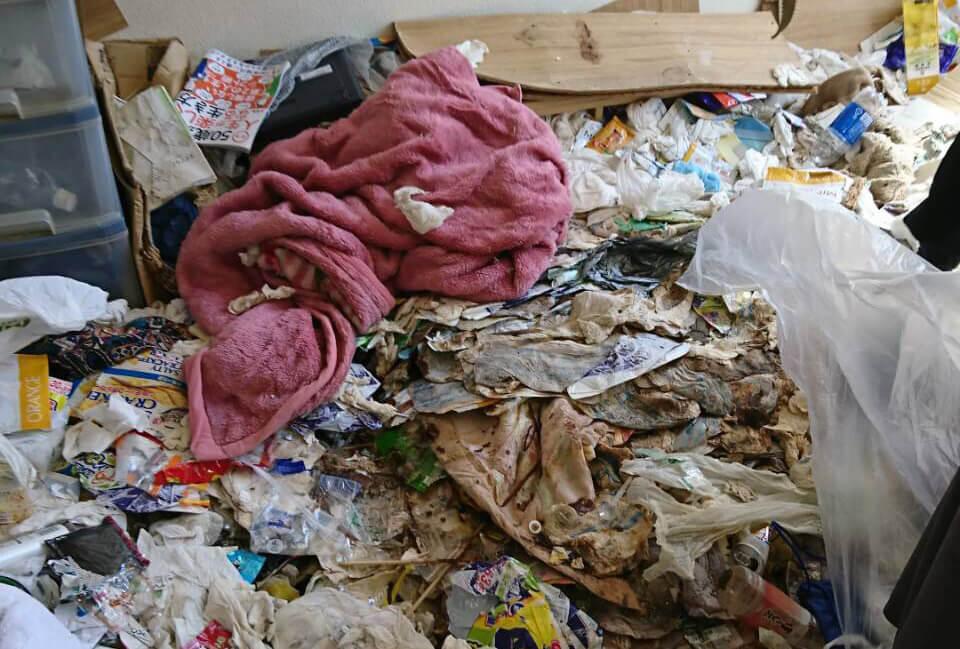 文京区M様のゴミ屋敷清掃事例