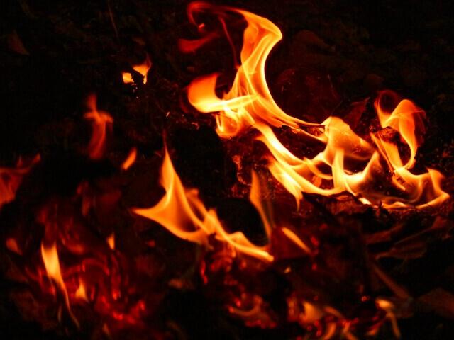 ゴミ屋敷 火事 ブログ 02