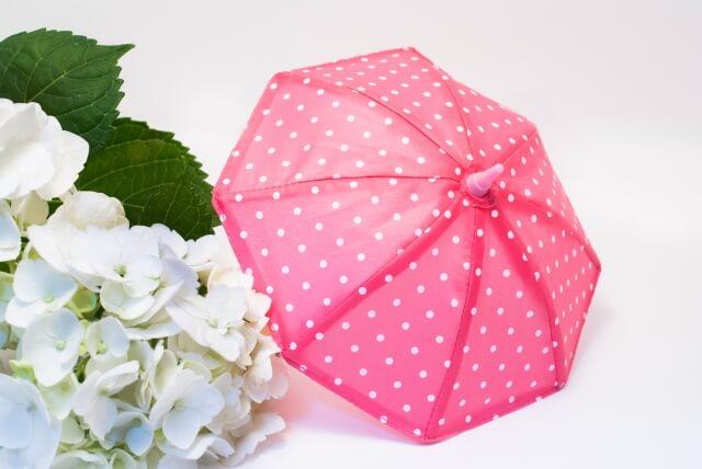 梅雨 部屋 カビ対策 ブログ01