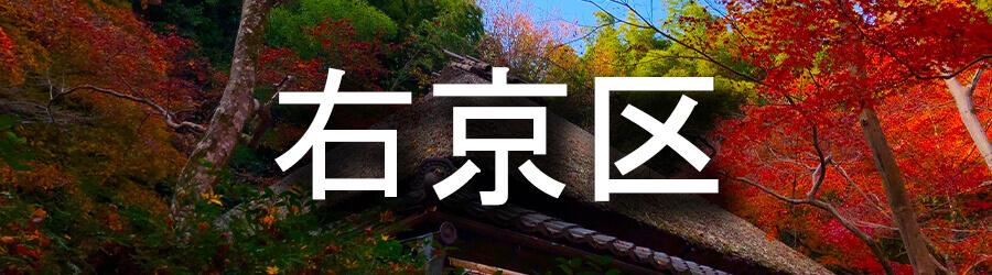 右京区(京都)でのゴミ屋敷清掃事例