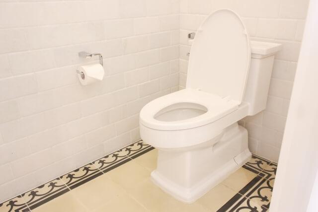 トイレ 尿石 掃除 ブログ02