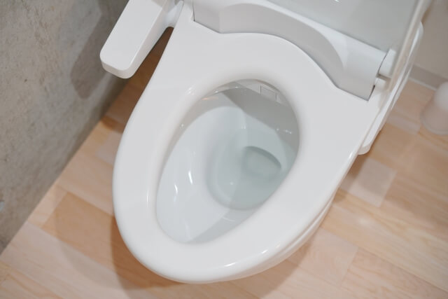 トイレ 尿石 掃除 ブログ03