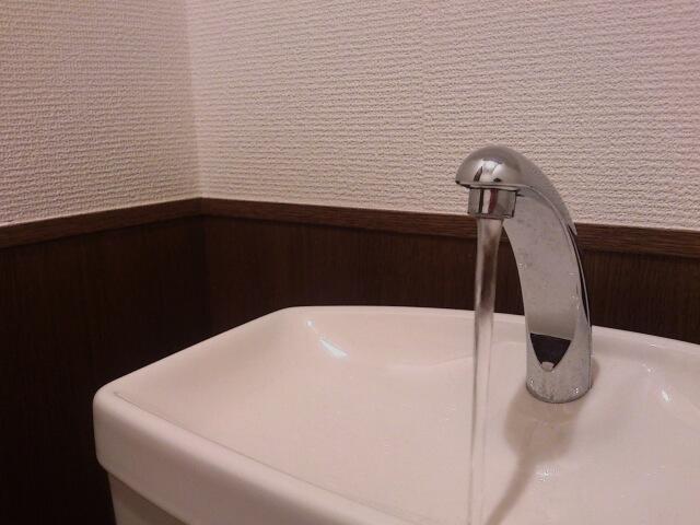 トイレ 尿石 掃除 ブログ08