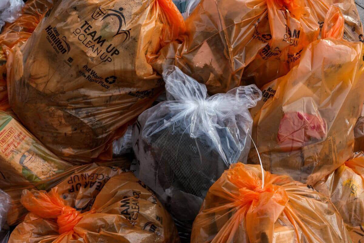 猫砂を燃えるゴミとして捨てる場合の注意点