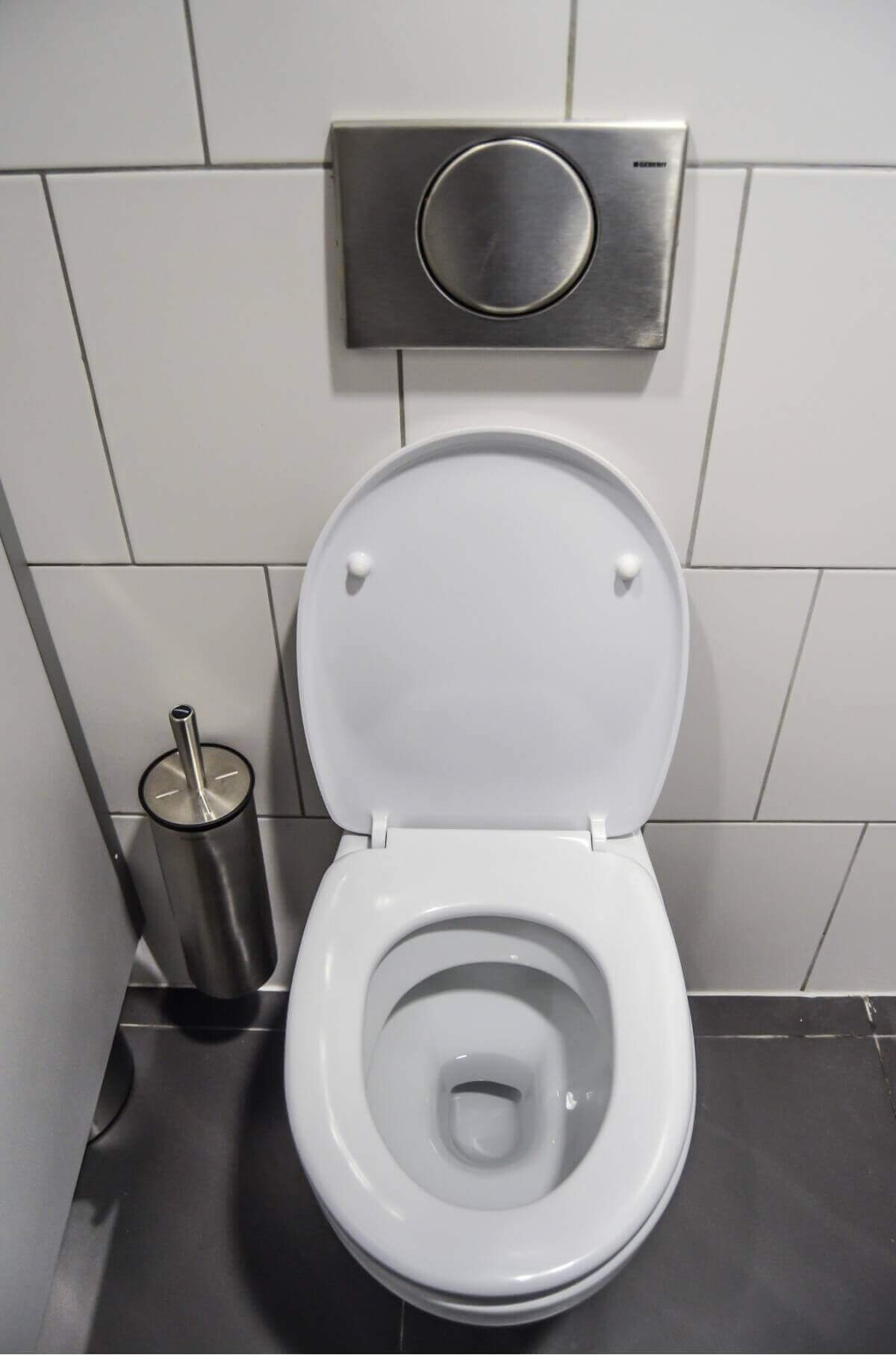 猫砂をトイレに流す場合の注意点